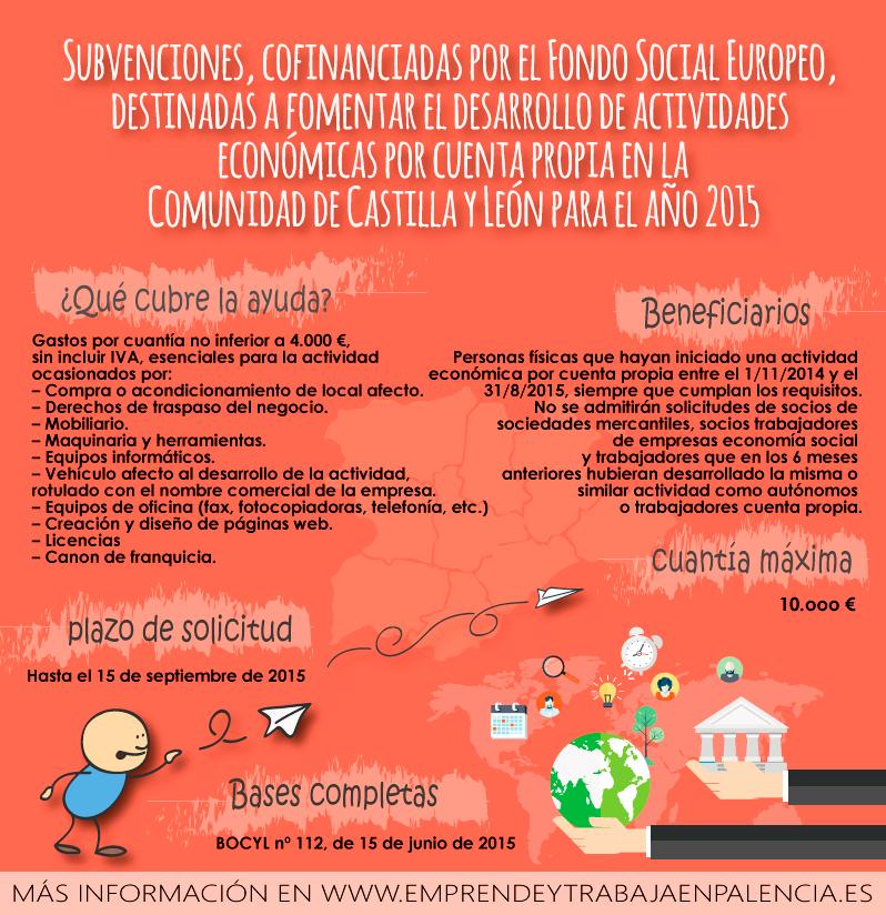 subvencion-cyl-2015