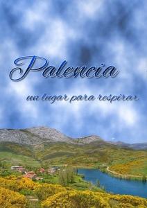 Palencia respirar